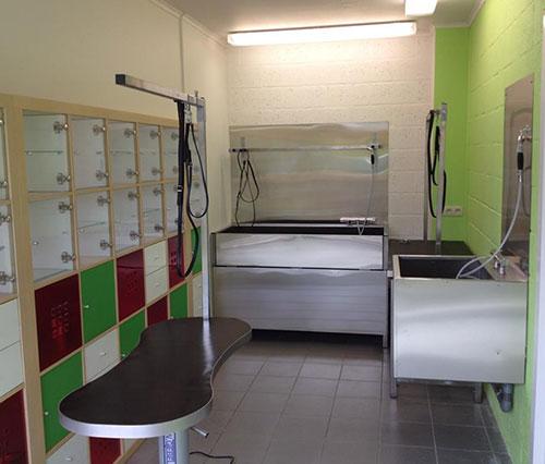 Entreprendre dans les services aux animaux de compagnie cr er un salon de toilettage - Ouvrir un salon de toilettage ...
