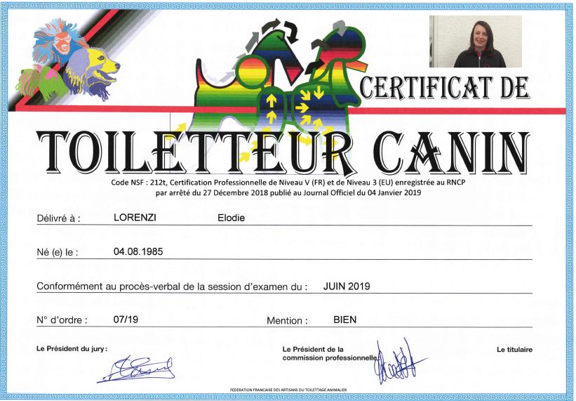 Certificat de Toiletteur Canin : le diplôme d'Elodie Lorenzi