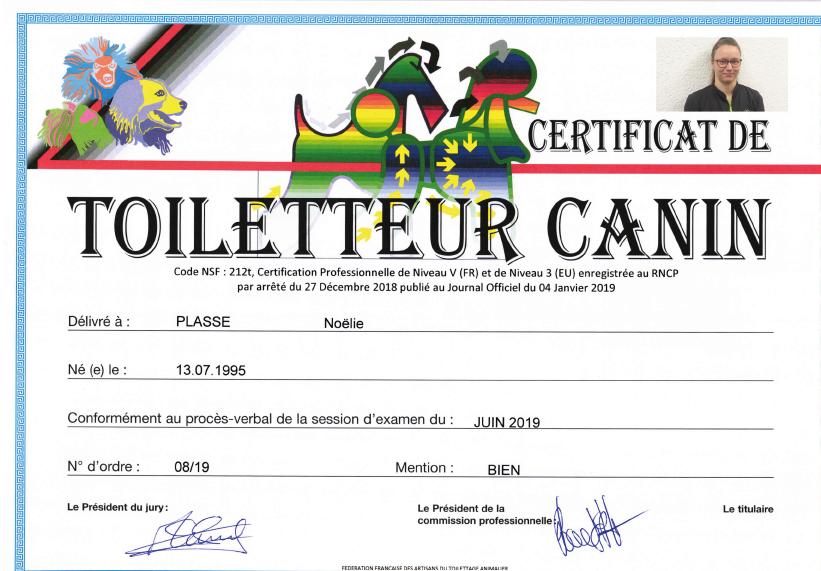 Certificat de Toiletteur Canin : le diplôme de Noëlie Plasse