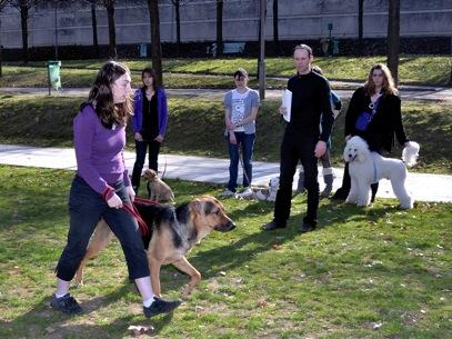 Formation éducateur canin : l'éducateur canin travaille quand ses clients ne travaillent pas